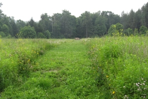 The final path of United Flight 93. The rock lies over the filled-in crater where the bodies of the passengers and crew were found.
