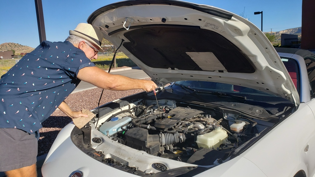 Man checking oil in car engine.